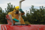 Large Orchard Spraying